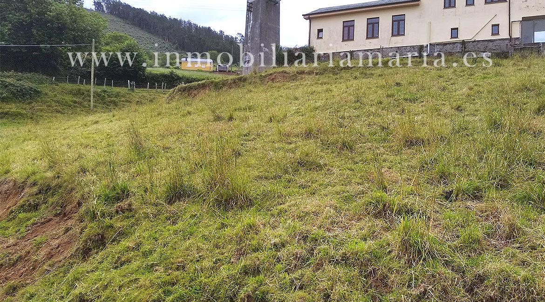 Finca-en-la-Andina-en-el-Franco-Asturias