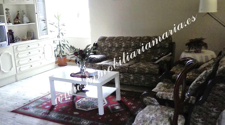 salon-venta-casa-lebredo-coana-asturias-inmobiliaria-maria