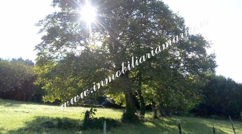 finca-casa-en-Villarsubin-II-en-A-Pontenova
